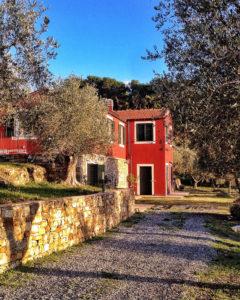 appartamento-oliva-vacanze-liguria-verticale