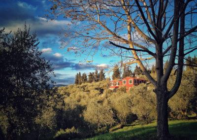 casa-novaro-imperia-appartamento-oliva-vacanza_0019